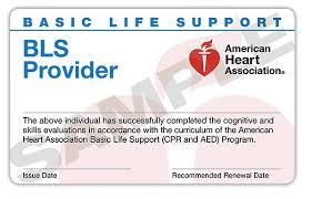 Teaching American Heart Association Cpr Courses
